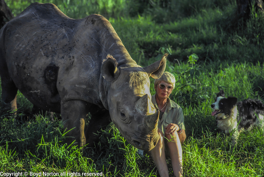 Anna Merz and Samia, black rhino raised by Anna after rescue, mother killed by poachers.