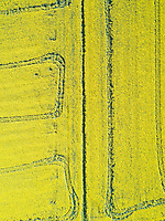 Aerial view of agricultural field at countryside, Girona, Spain.