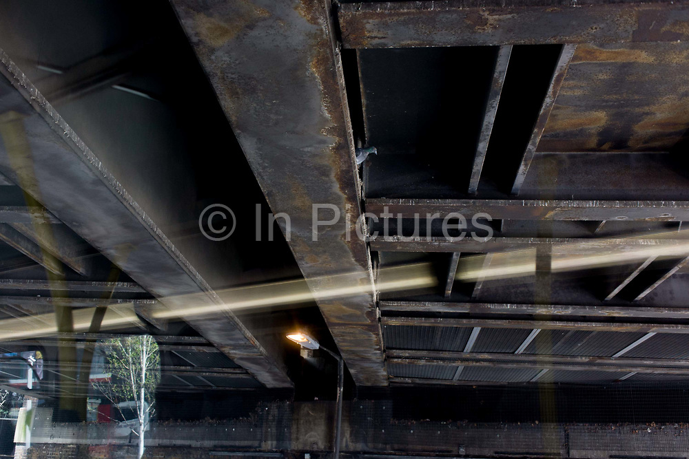Lone pigeon perched on a girder on the underside of a railway bridge in south London. Seen from the top deck of a London bus, we see the lone bird with its head poking out from its steel nest, the strip light from the bus' interior make a diagonal line across the scene. The Bridge serves a commuter railway through the capital at Elephant & Castle in Southwark. The girders look weathered from seeping water above and the pigeon's habitat resembled that of an urban tree viewpoint.