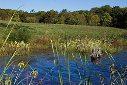 08 October 2013:   Lake Yellowwood in Yellowwood State Forest.<br /> <br /> Yellowwood State Forest was created on leased federal land in 1940.  It was later (1956) deeded to the state of Indiana.  More than 2000 vacant and eroded acres were planted with pine, black locust, black walnut, and red and white oak.  Yellowwood Lake is 133 acres and about 30 feet deep.