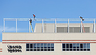Men on the roof of Orange Regional Medical Center in the Town of Wallkill, N.Y., work on the frame that will support a new sign on the building on Monday, Sept. 30, 2013. (AP Photo/Times Herald-Record/TOM BUSHEY)