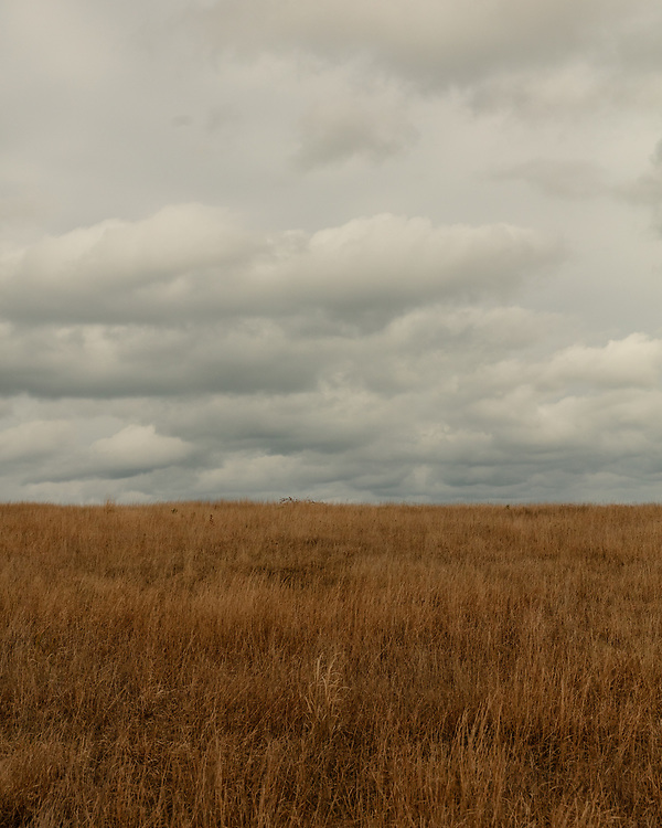 The grassy hills of Nantucket on a cloudy afernoon.