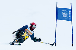 , , Giant Slalom, 2013 IPC Alpine Skiing World Championships, La Molina, Spain