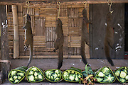 Squirrels for food at local market<br /> Nagaland,  ne India