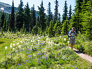 Hiking in the Mt. Hood National Forest on the trail to McNeil Point, Oregon