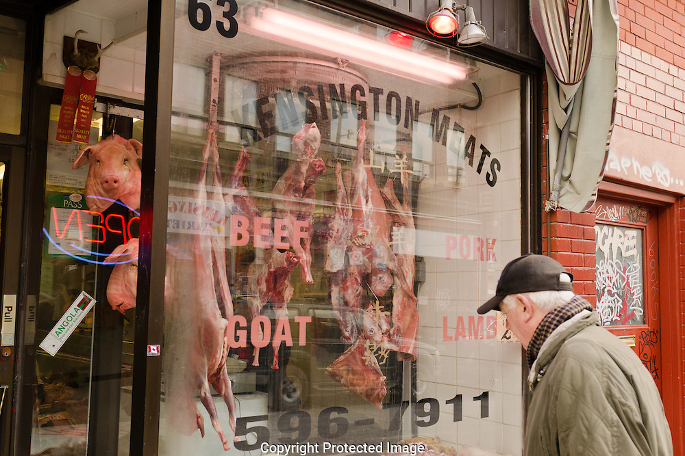 Walking through Kensington Market it was hard not to notice the pig head staring out. The man looking in, deciding which cut to buy brings the whole image together.