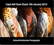 Copt Hall Farm Shoot  9th January 2013