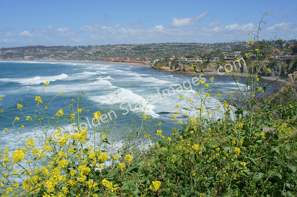 The view along the village of La Jolla coastline, located in San Diego, California.