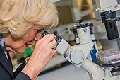 Royal Arthritis UCLH Visit