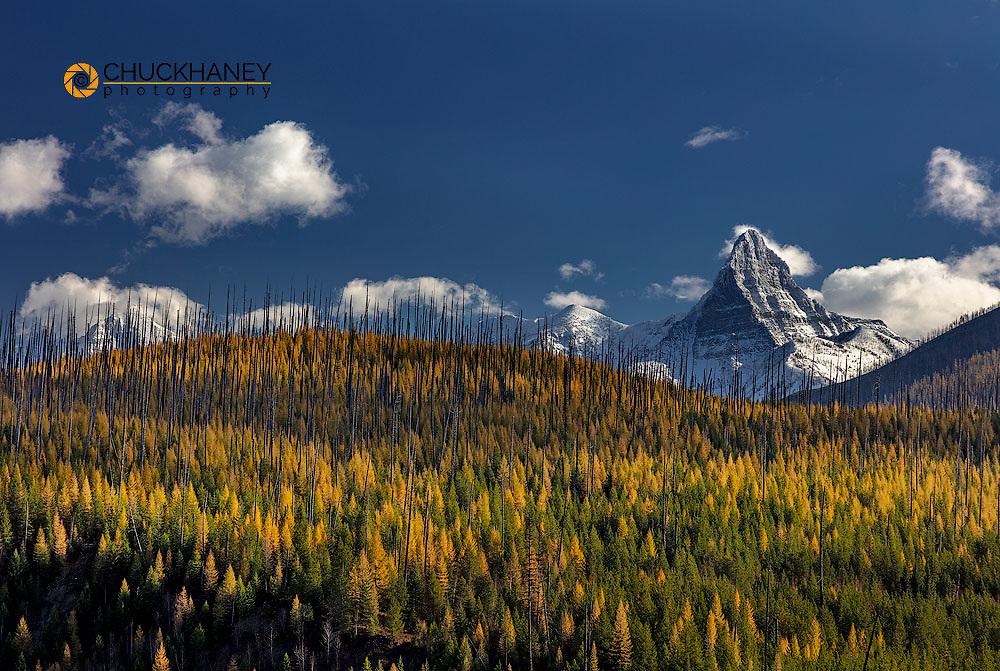 St Nicholas Mountain in autumn in Glacier National Park, Montana, USA