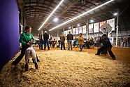 Logan County Junior livestock show 2019