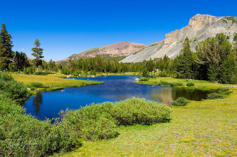 Alpine tarn in Dana Meadows under Mount Dana,Tuolumne Meadows, Yosemite National Park, California USA