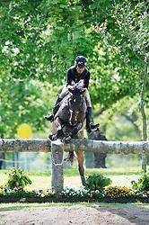 Nicholson Andrew, (NZL), Calico Joe<br /> Cross Country<br /> Mitsubishi Motors Badminton Horse Trials - Badminton 2015<br /> © Hippo Foto - Jon Stroud<br /> 09/05/15