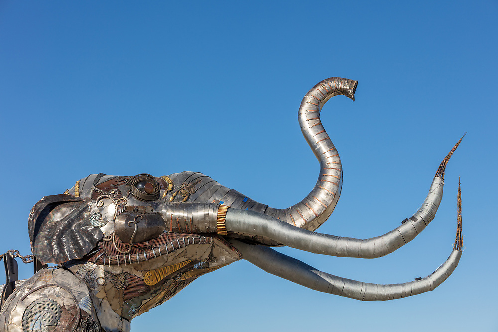 The Monumental Mammoth by: Girl Scout Gold Award Recipient Tahoe Mack, Mentor and Protector of Tule Springs Representative Sherri Grotheer, and artists Luis Varela-Rico and Dana Albany from: Las Vegas, NV year: 2019 The Monumental Mammoth project will depict a life-sized steel Colombian mammoth skeleton collaged with metal found objects to tell the story of Tule Spring National Monument's past, present, and future. The sheer size and struggle of the mammoth's stance is a representation of the universal call to protect what the earth has given humanity. As a community, we are called together to protect the fossils of our past and the education of our future. Dana Albany and Luis Varela-Rico are pulling together the sleek elements of the interior steel structure and the intricate weavings to represents the distinctive community that is Las Vegas.It also tells the story of a rising feminine power, and shows all women of any age that anything is possible! URL: https://tulemammothproject.wordpress.com Contact: tulemammothproject@gmail.com https://burningman.org/event/brc/2019-art-installations/?yyyy=&artType=H#a2I0V000001AVtMUAW
