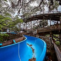 Wild Waters - Silver Springs, Ocala, FL
