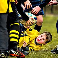 SERIE ROOKIE <br /> Nederland, Hilversum, 14-03-2015.<br /> Rugby <br /> Turven ( 7 & 8- jarigen ). RC 't Gooi - RC Eemland<br /> Spelertje van RC Eemland is getackeld en verliest de bal terwijl een Angry Bird op een kous van een selertje van 't Gooi toekijkt.<br /> Foto : Klaas Jan van der Weij