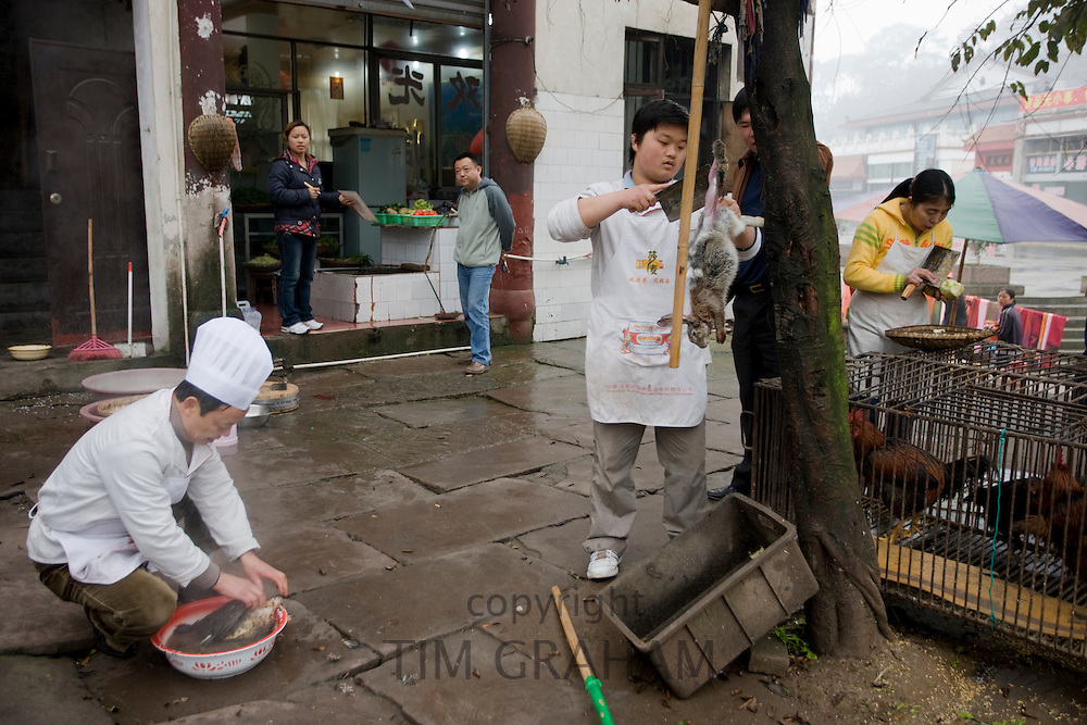 Chinese chefs skin rabbit and pluck chicken to cook for restaurant customers at Bao Ding near Chongqing, China