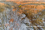 63877-01406 Aerial view of winter forest and creek Stephen A. Forbes State Park Marion Co. IL