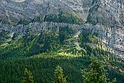 Canadian Rockies, Banff National Park. rocky ledge above tree line
