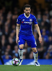 """Chelsea's Cesc Fabregas during the Premier League match at Stamford Bridge, London. PRESS ASSOCIATION Photo. Picture date: Monday May 8, 2017. See PA story SOCCER Chelsea. Photo credit should read: Mike Egerton/PA Wire. RESTRICTIONS: EDITORIAL USE ONLY No use with unauthorised audio, video, data, fixture lists, club/league logos or """"live"""" services. Online in-match use limited to 75 images, no video emulation. No use in betting, games or single club/league/player publications."""