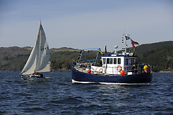 The Clyde Cruising Club's Scottish Series held on Loch Fyne by Tarbert. <br /> <br /> Runa and 2143C, Mignon,  B Fisher,/B Dunning, CCC, Fife Day Boat 1898