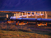 Heat Pipes on the Vertical Support Members (VSMs) of the Trans Alaska Pipeline near mile 153 north of Atigan Pass in the Brooks Range, Alaska.
