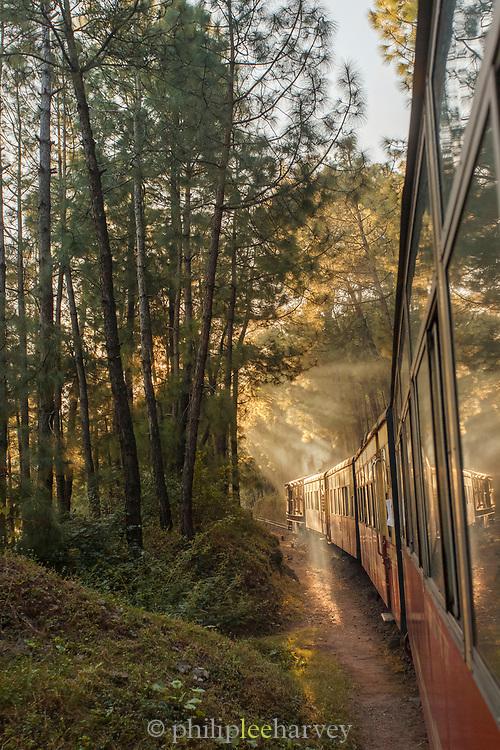 Kalka–Shimla Railway in forest in Shimla, India