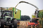 Nederland, Elzendorp, 16-9-2009Maisplanten worden geoogst. Het wordt als varkensvoer gebruikt. Oogstmachines, loonwerkersbedrijf. Landbouw en veeteelt.Foto: Flip Franssen/Hollandse Hoogte