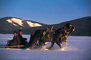 Darkhad men on horse drawn sled<br /> Renchinlhumbe Town<br /> Darkhadyn Khotgor Depression<br /> Mongolia