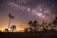 Florida Night Captures