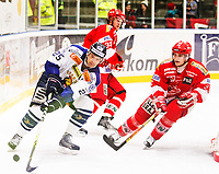 Ishockey , 20. Januar 2008 , GET-ligan , Stjernen - Sparta , Jiri Jantovsky Sparta , Joachim Goldstein Stjernen , Johan Olsson Stjernen , Foto: Thomas Andersen , Digitalsport