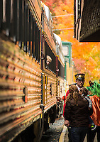 Young Declan peers out the window of the Winnipesaukee Scenic Railroad as he awaits his train ride from Laconia's Railroad Station on Saturday afternoon during Pumpkin Fest.  (Karen Bobotas/for the Laconia Daily Sun)