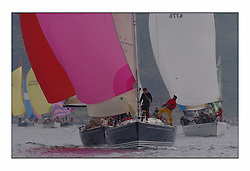 Bell Lawrie Series Tarbert Loch Fyne - Yachting.The first day's inshore races...GBR 8370, Thornoxon, a first 42 .