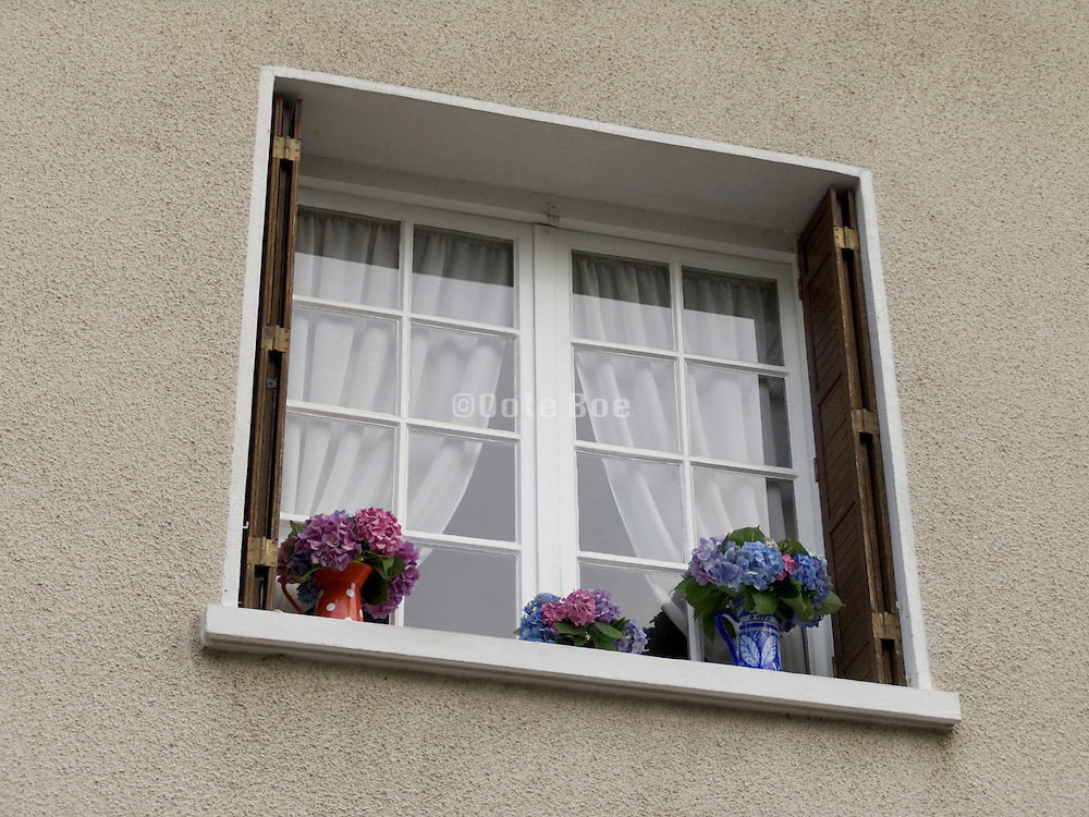 Window with flowers on the ledge