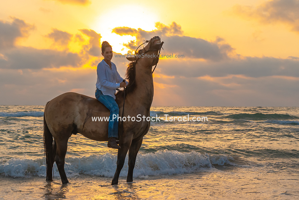 Young woman bareback riding at the water's edge on a Mediterranean beach at sunset