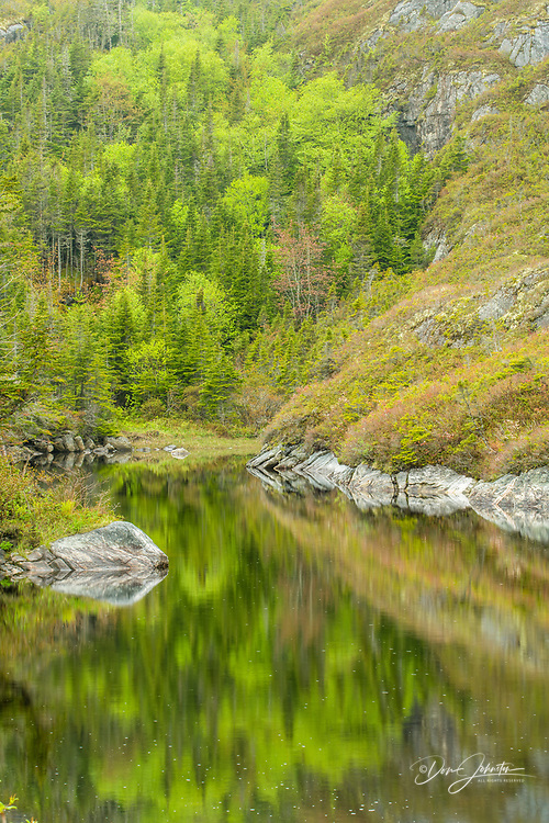 Rock and tree reflections in roadside ponds, Hwy 470 , Newfoundland and Labrador NL, Canada