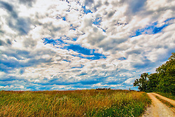 Blue Skies and Golden Fields in this late autumn scene at Busch Wildlife Sanctuary
