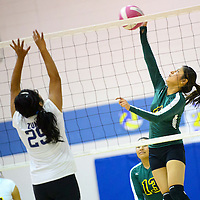 102913  Adron Gardner/Independent<br /> <br /> Zuni Thunderbird Kelsey Homer (29), left, rises to meet a spike from Newcomb Skyhawk Stephanie Watchman (4) in Zuni Tuesday.