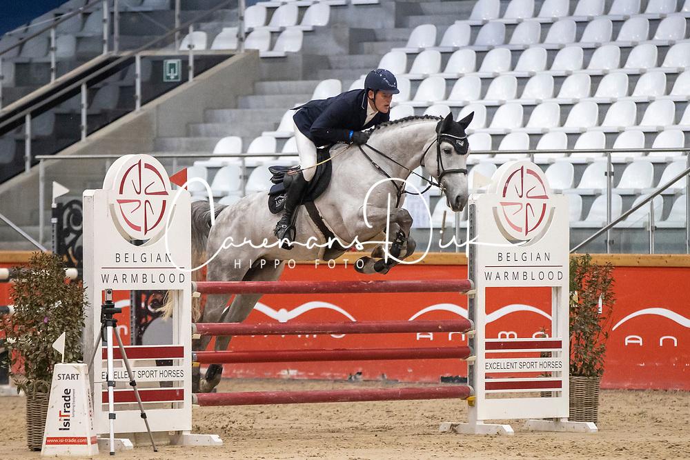 Vinckx Wim, BEL, D-Ici van de Kattevennen Z<br /> Pavo Hengsten competitie - Oudsbergen 2021<br /> © Hippo Foto - Dirk Caremans<br />  22/02/2021