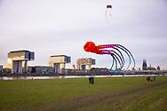 large octopus kite on the banks of the river Rhine in the town district Deutz, view to the Rheinau harbour with the Crane Houses and the cathedral, Cologne, Germany.<br /> <br /> grosser Octopus Drachen ueber den Rheinwiesen in Deutz, Blick zum Rheinauhafen mit den Kranhaeusern und zum Dom, Koeln, Deutschland.