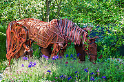 Joey the War Horse on the No Man's Land:ABF The Soldier's Charity Garden. The Chelsea Flower Show 2014. The Royal Hospital, Chelsea, London, UK.  19 May 2014.