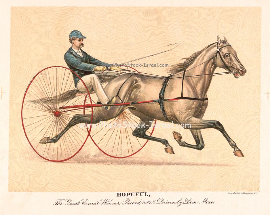 Hopeful The Great Circuit Winner 1889