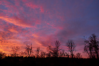 Colorful Clouds at Dawn. Image taken with a Fuji X-T1 camera and 16 mm f1.4 lens (ISO 200, 16 mm, f/6.4, 1/15 sec).