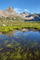 Nylon Peak and Pronghorn Peak reflected in pond near Lee Lake, Bridger Wilderness. Wind River Range, Wyoming