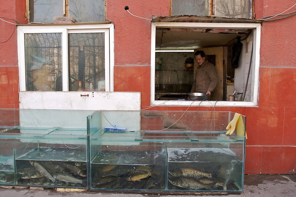 A fish monger on Beiyuan Rd in Chaoyang District of Beijing, China.