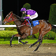 Crystal Pearl and Liam Jones winning the 4.50 race
