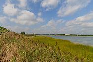 Wetland Preserve,  Quogue, NY