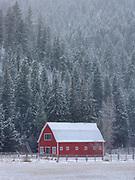 Red Barn near Sula, Montana.