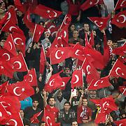 Turkey's supporters during their a international friendly soccer match Turkey betwen Brazil at Sukru Saracoglu Arena in istanbul November 12, 2014. Photo by Aykut AKICI/TURKPIX