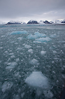 Thawing ice floes in sea, Svalbard, Norway.